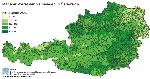 mittlerer Vorrat der Gemeinden in Österreich in vfm/ha