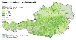 Gesamt-Nadelholzvorrat in Österreich in vfm