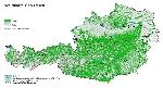 Waldfläche in Österreich