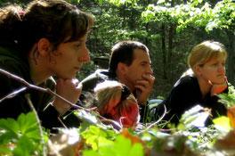 Thema<h2>Durchatmen</h2><p>Der Wald ist die grüne Lunge Österreichs</p>